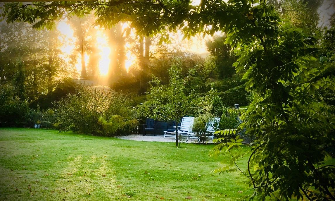 Garten vom Yogahaus am Stechlinsee